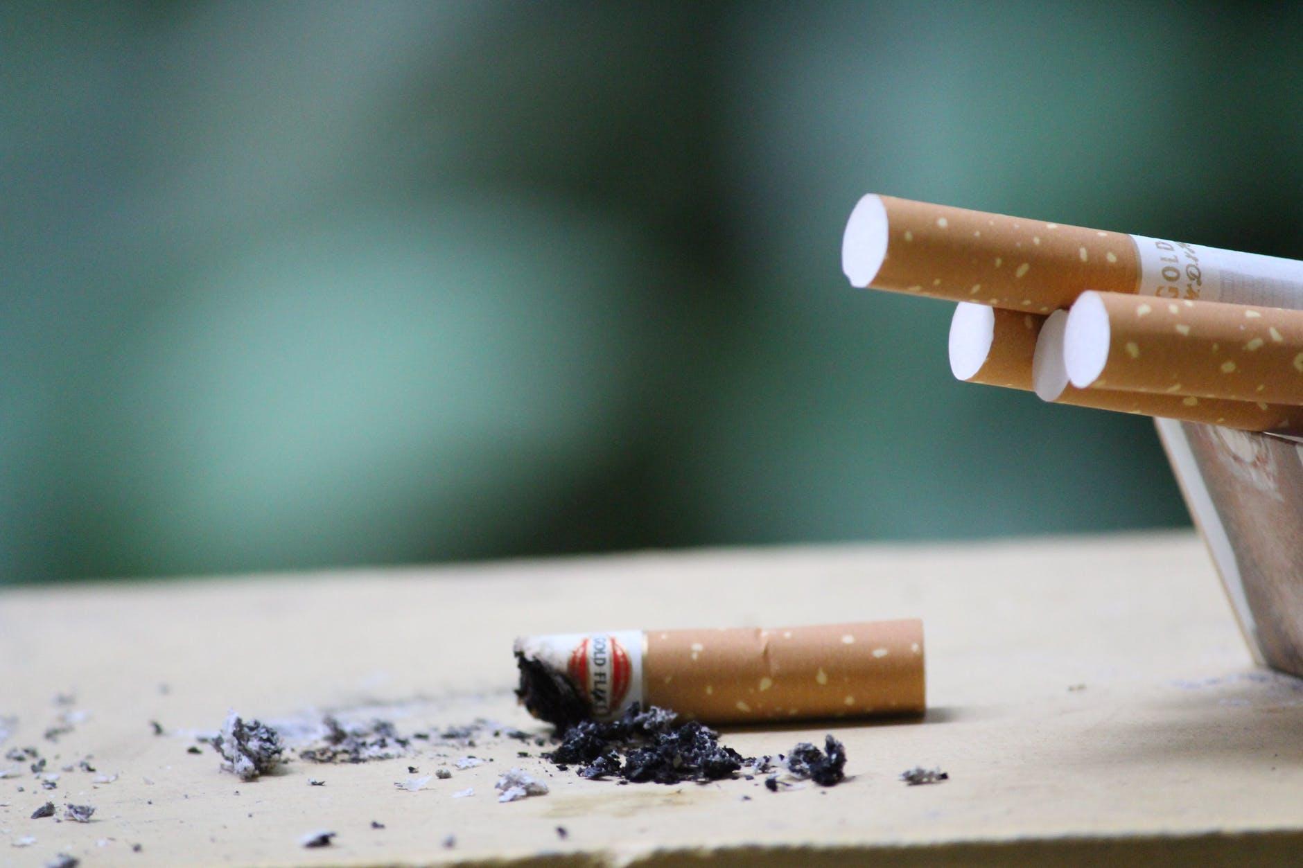 close up photo of cigarette