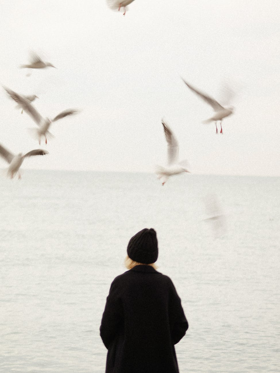 blond woman in black standing at seashore and seagulls flying around